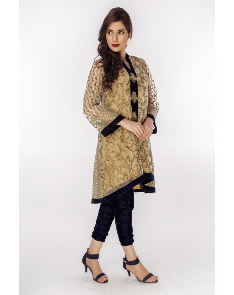 Beige Net with copper and sequence jaal embroidery with velvet trouser