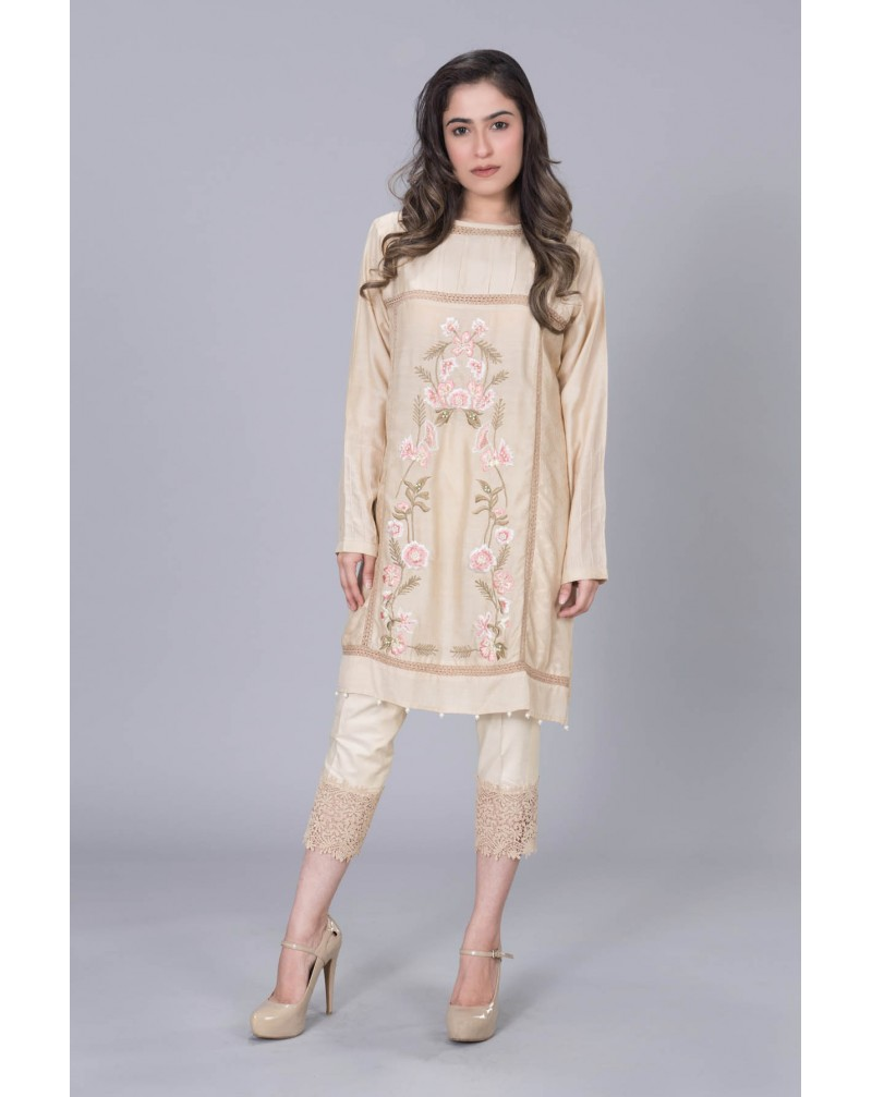 Beige Cotton Net with pastel front Embroidery